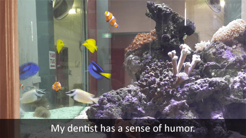 dentists,finding nemo