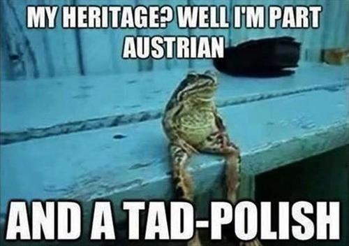 heritage puns frog - 7836392704