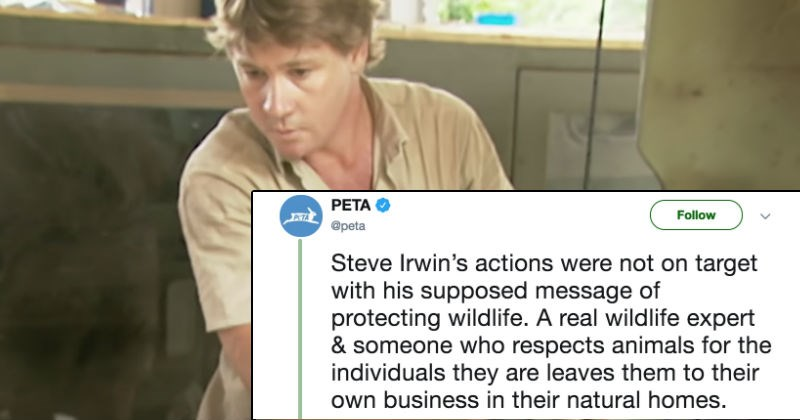 peta goes against steve irwin