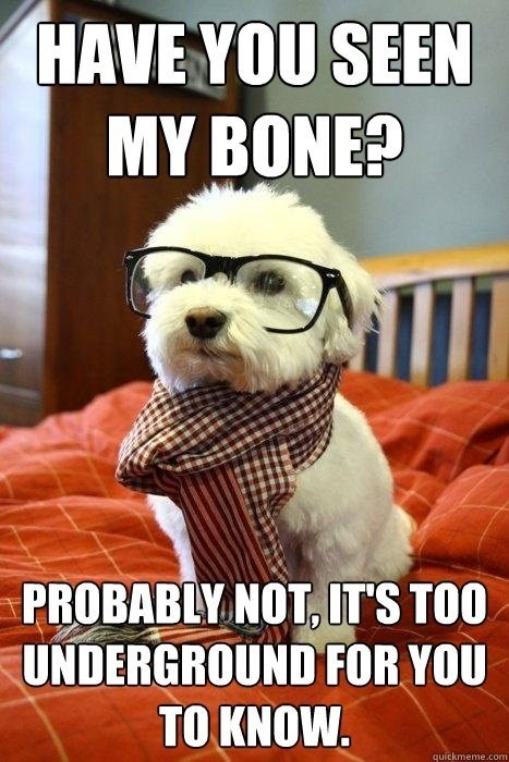 dogs bone glasses hipster underground