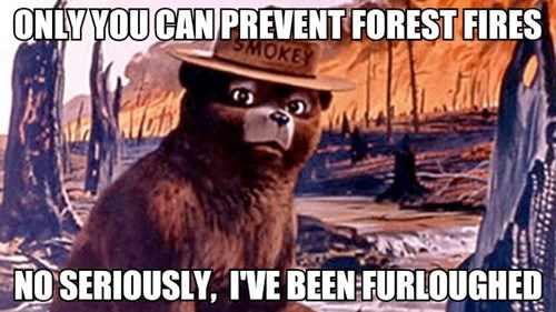 government shutdown,forest fires,Smokey the Bear