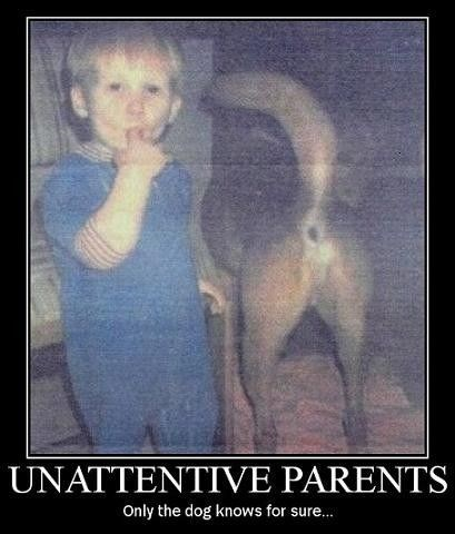 dogs inattentive funny parents