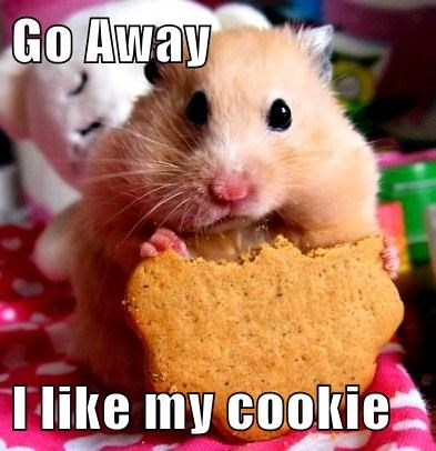 Go Away  I like my cookie