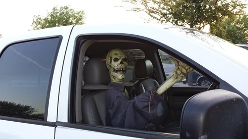 g rated skeletons - 7837121280