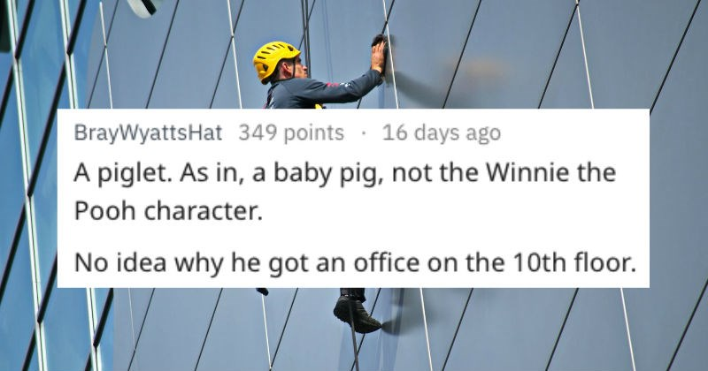 crazy things window cleaners had witnessed