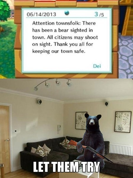bears,animal crossing,funny