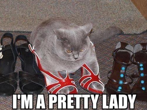 shoes fashion Cats - 7841184768