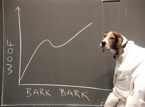 dogs puns - 7841318656