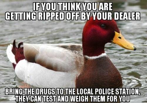 Memes,malicious advice mallard