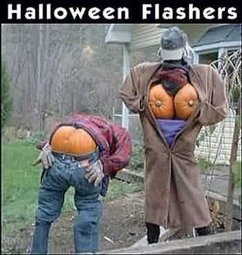 pumpkins Spooky FAILs and HalloWINs g rated - 7842109184