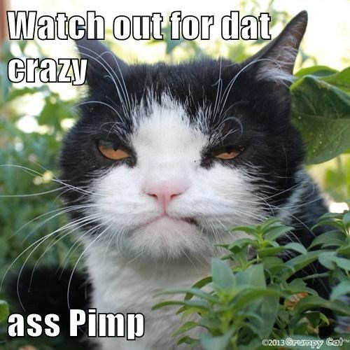 Watch out for dat crazy   ass Pimp