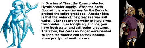 theories zora zelda - 7842853120