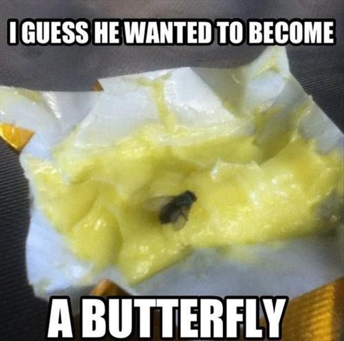butter puns food flying - 7843238656