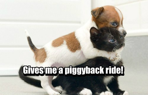 Gives me a piggyback ride! Gives me a piggyback ride!