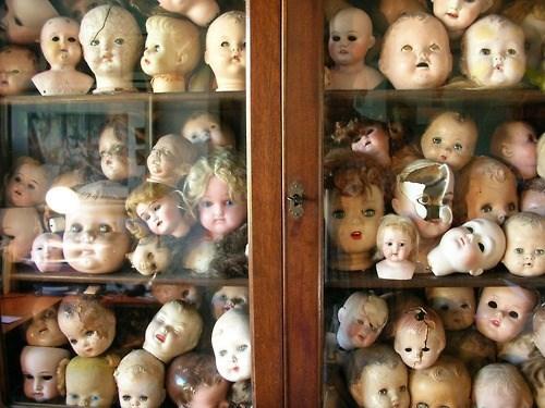 wtf dolls shelves funny