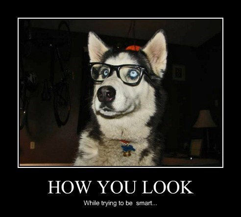 HOW YOU LOOK While trying to be smart...