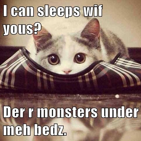 I can sleeps wif yous? Der r monsters under meh bedz.