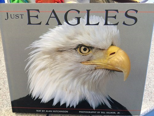 eagles merica books - 7845081344
