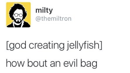 Funny tweets and tumblr posts.