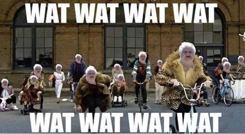 Music,Macklemore,Memes,wat