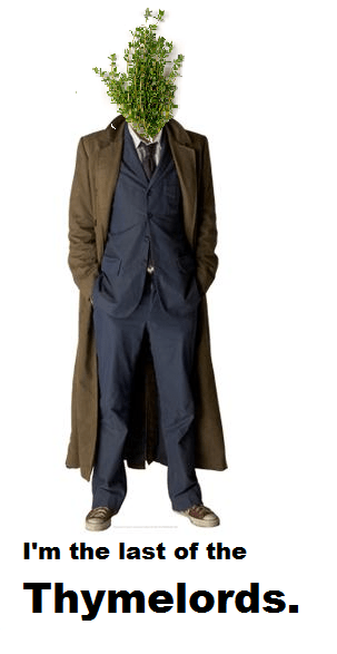 10th doctor puns doctor who - 7846098688