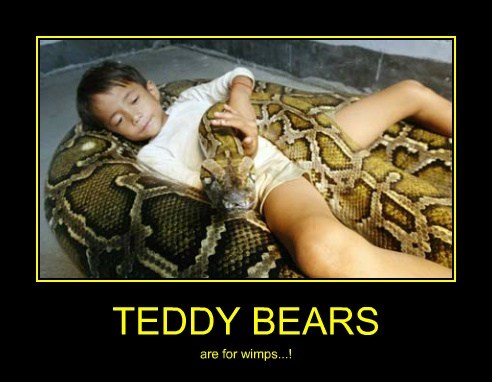 wtf kids teddy bears wimps snakes funny