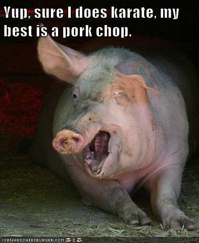 pork chop karate pig - 7847013632