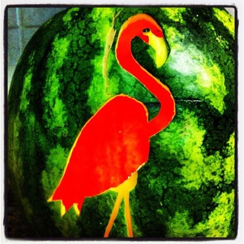 jack o lanterns famously freaky g rated watermelon flamingo - 7847216896