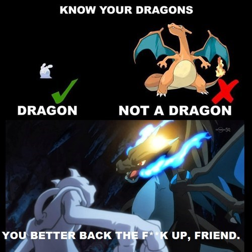 Best Not to Mess With Charizard