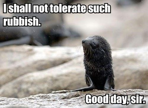 good day sir,seals,cute,rubbish