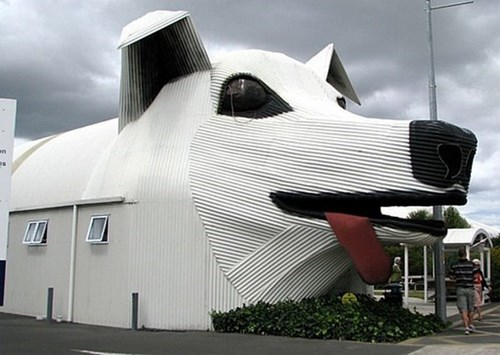 dogs,remodel,dog house,huge