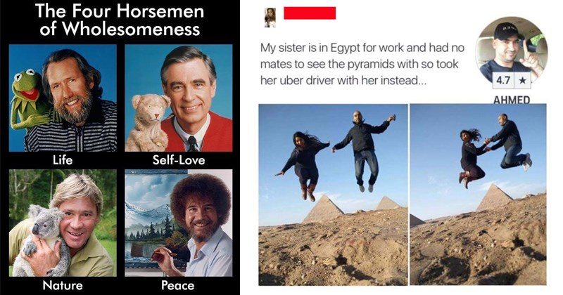 aww wholesome dogs mr rogers adorable heartwarming steve irwin cute facebook uplifting bob ross social media Reddit animals - 7847685