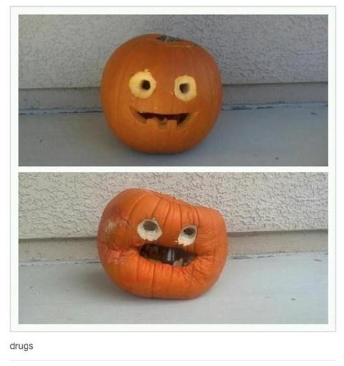 pumpkins halloween funny - 7847722496