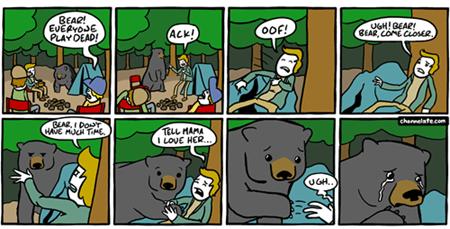 nature,bears,funny,web comics