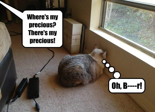 Where's my precious? There's my precious! Oh, B----r!