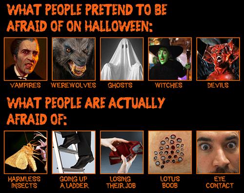 fears halloween spooky - 7848444160