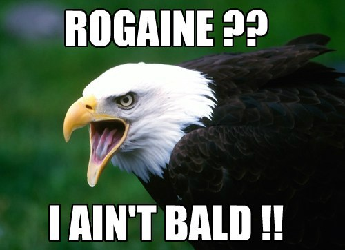 birds,bald eagles,rogaine