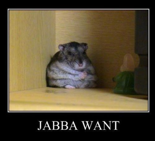 star wars,jabba the hutt,funny,mouse