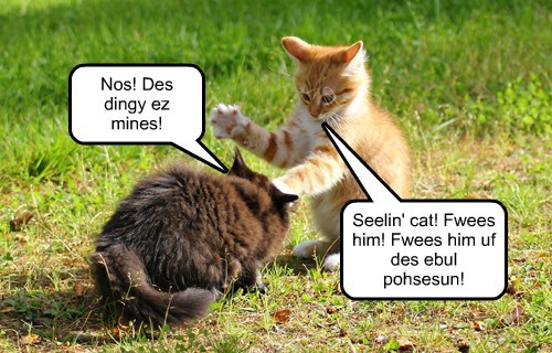 Seelin' cat! Fwees him! Fwees him uf des ebul pohsesun!