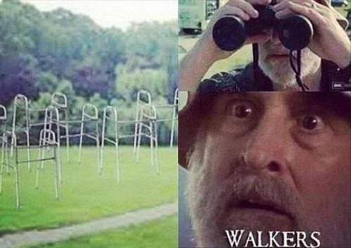 walkers,dale,The Walking Dead