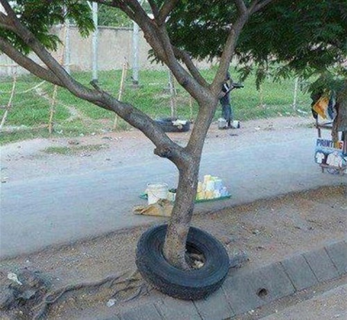design,tire,funny