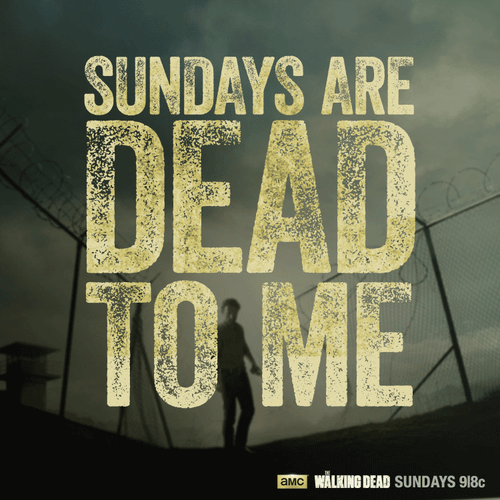 sundays i'm booked The Walking Dead - 7852927488