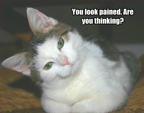You look pained. Are you thinking?
