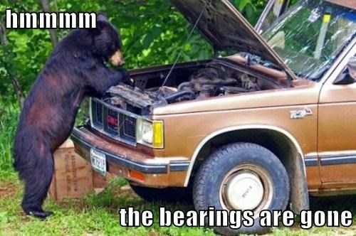 picnic,bearings,bears,mechanic