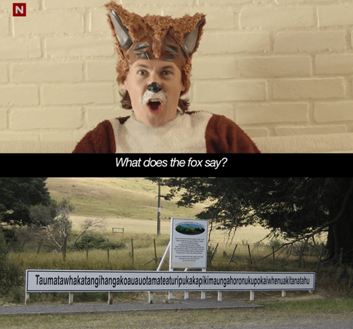 what does the fox say,Memes