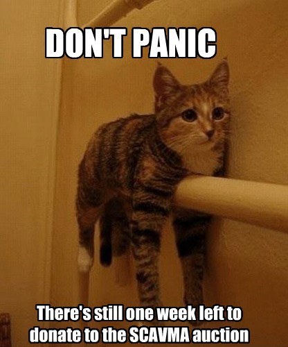 DON'T PANIC There's still one week left to donate to the SCAVMA auction