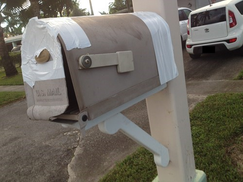 mailbox Palm Tree there I fixed it duct tape g rated