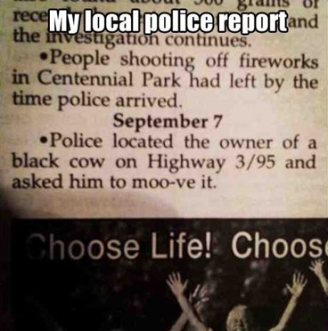 police reports puns cows police - 7854565888
