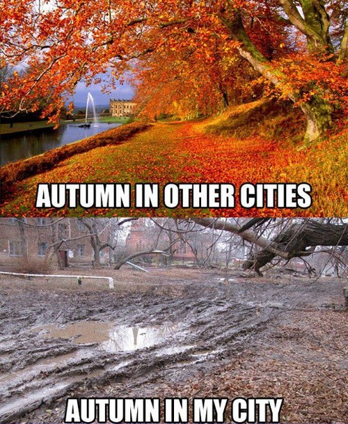 autumn expectations vs reality seasons funny - 7854587136