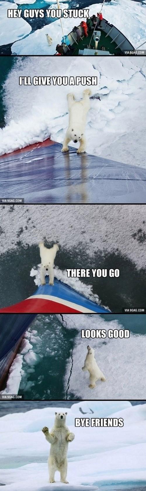 polar bears help ice friendly ship - 7856337920